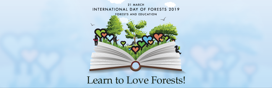 Learn to Love Forests! - FAO